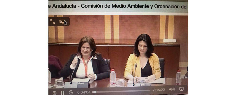 Vanessa Villegas interviene en el Parlamento de Andaucía